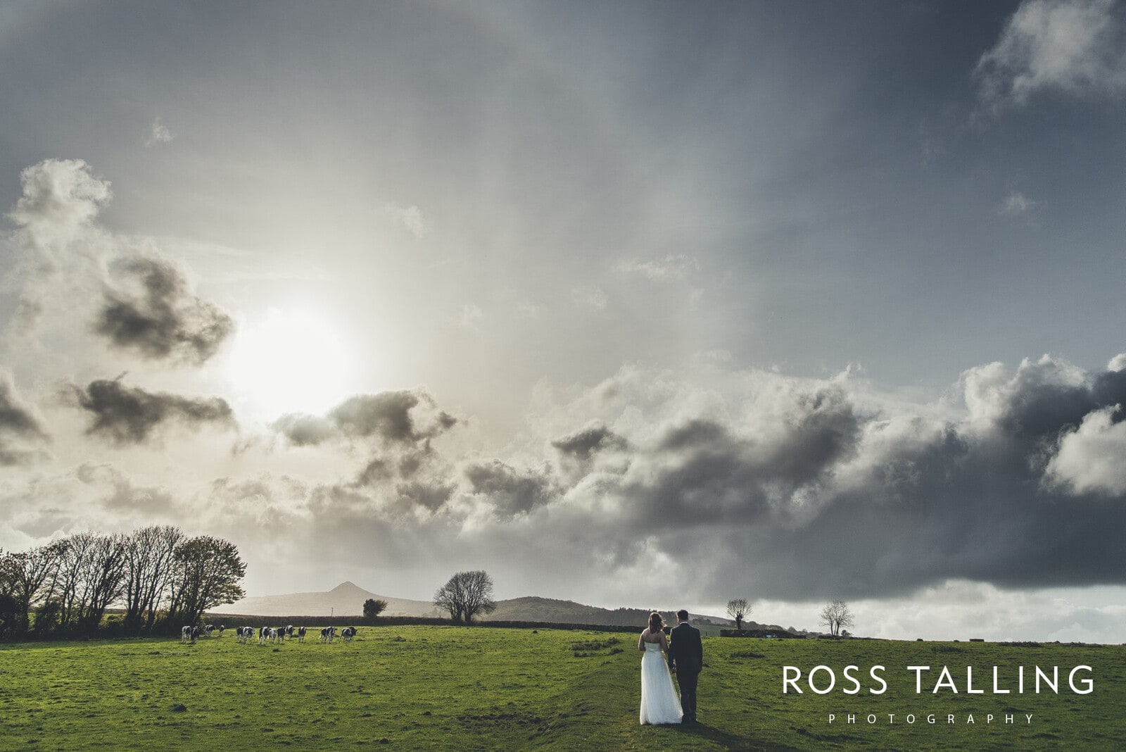 Wedding Photography at the Green Cornwall_0085