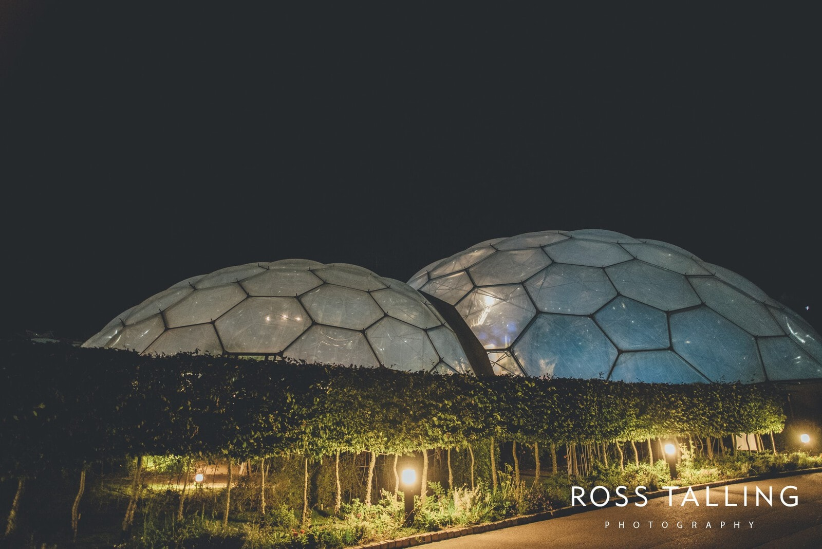 Eden Project Wedding Photography_0131