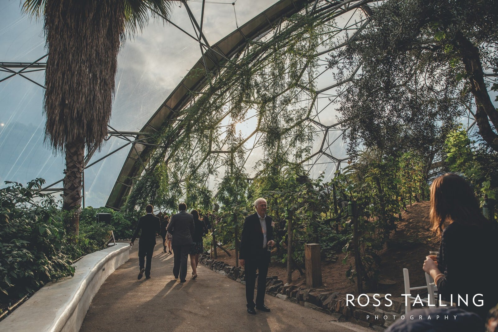 Eden Project Wedding Photography_0052