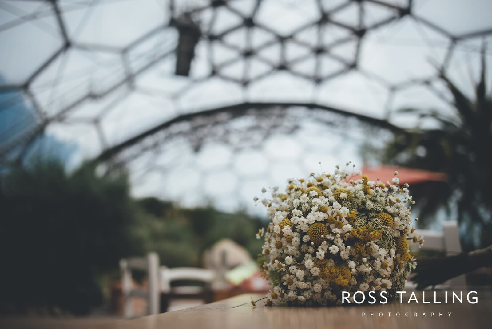 Eden Project Wedding Photography_0006