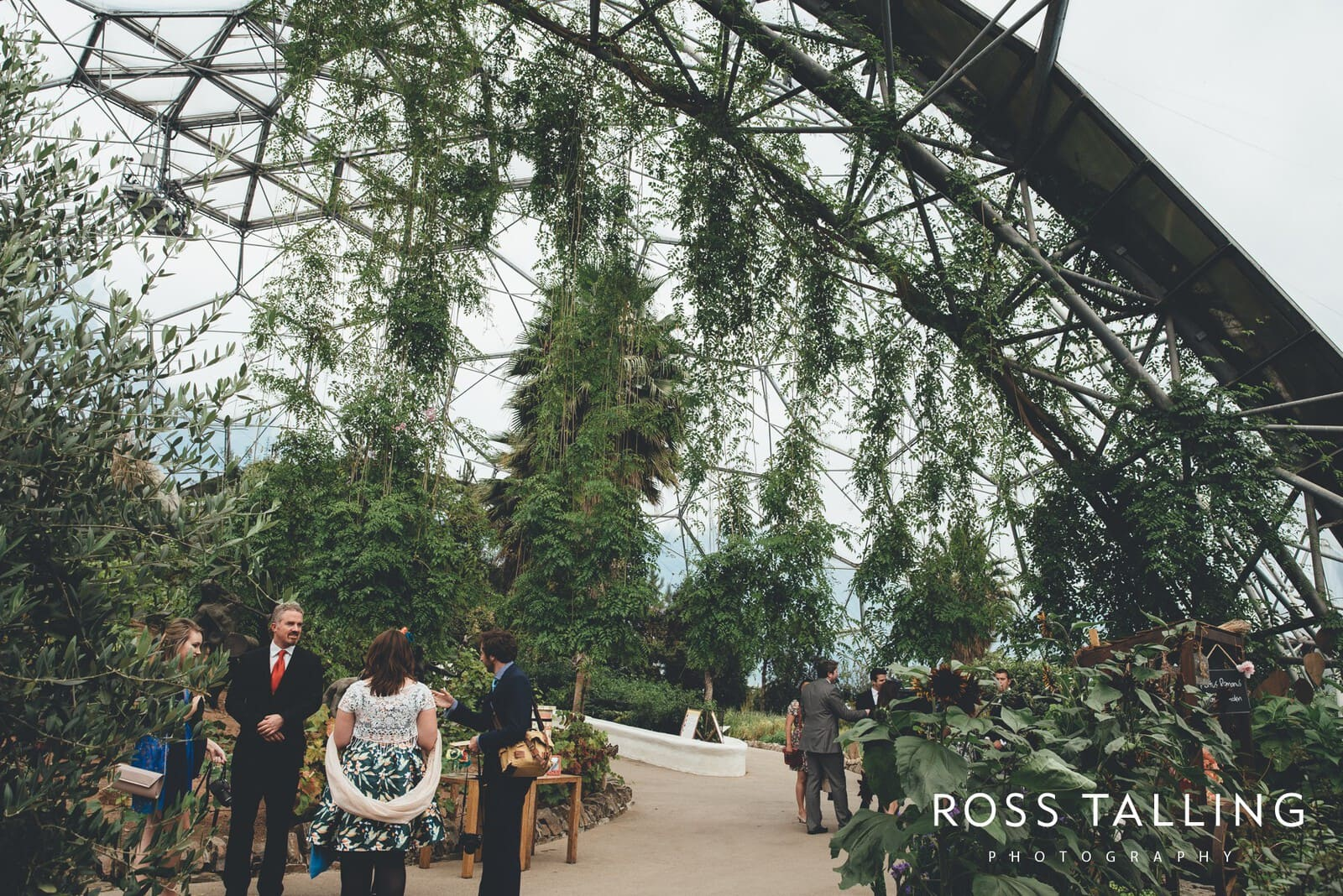 Eden Project Wedding Photography_0005