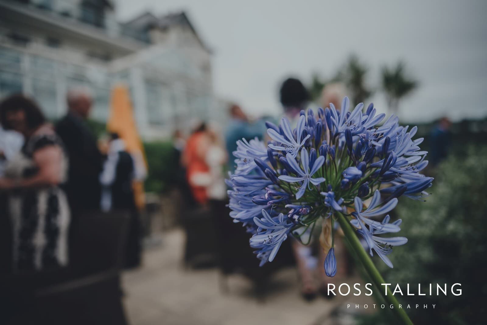 natalie-steve-carbis-bay-hotel-wedding-photography-cornwall_0039