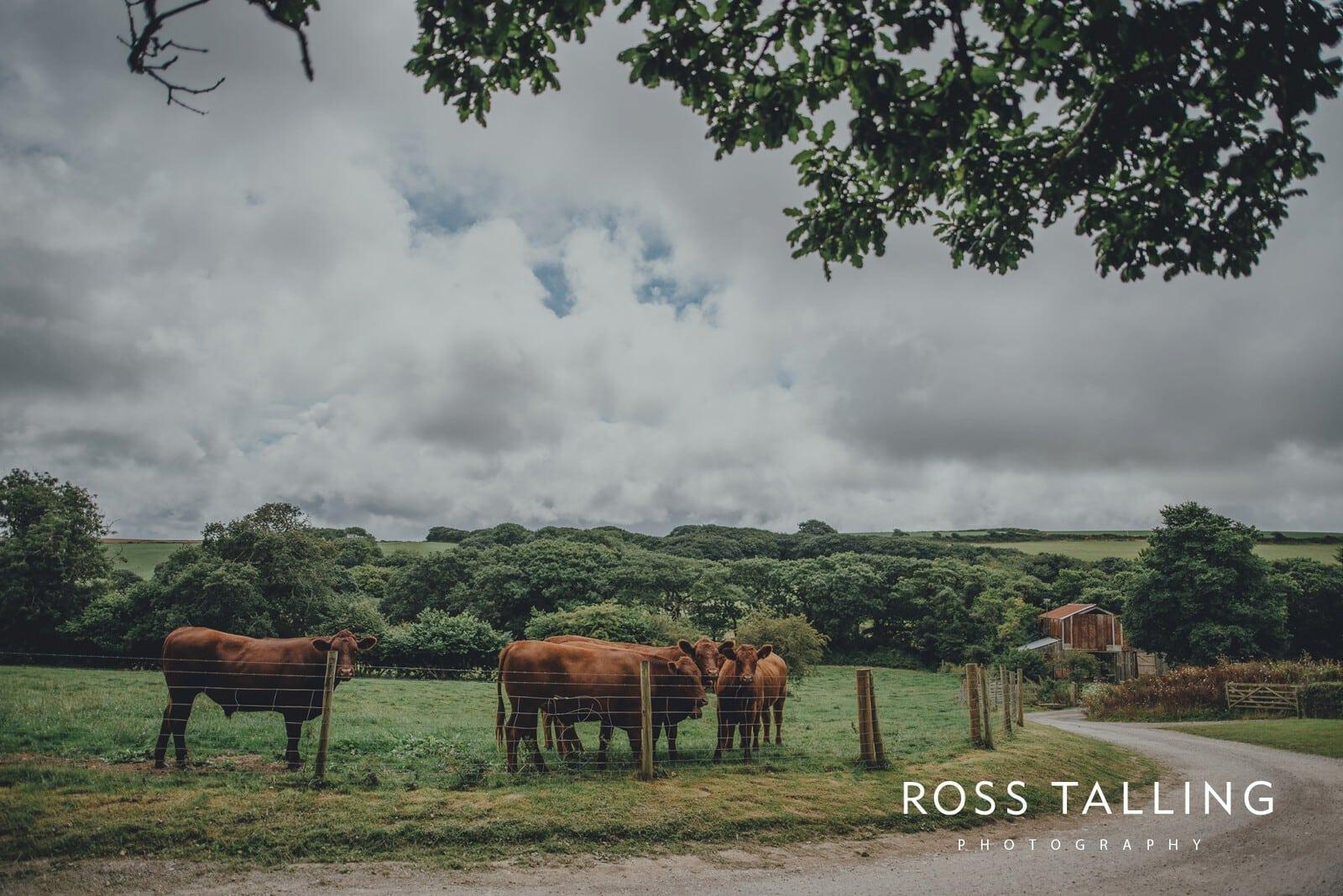 nigel-lauras-nancarrow-farm-wedding-photography_0000
